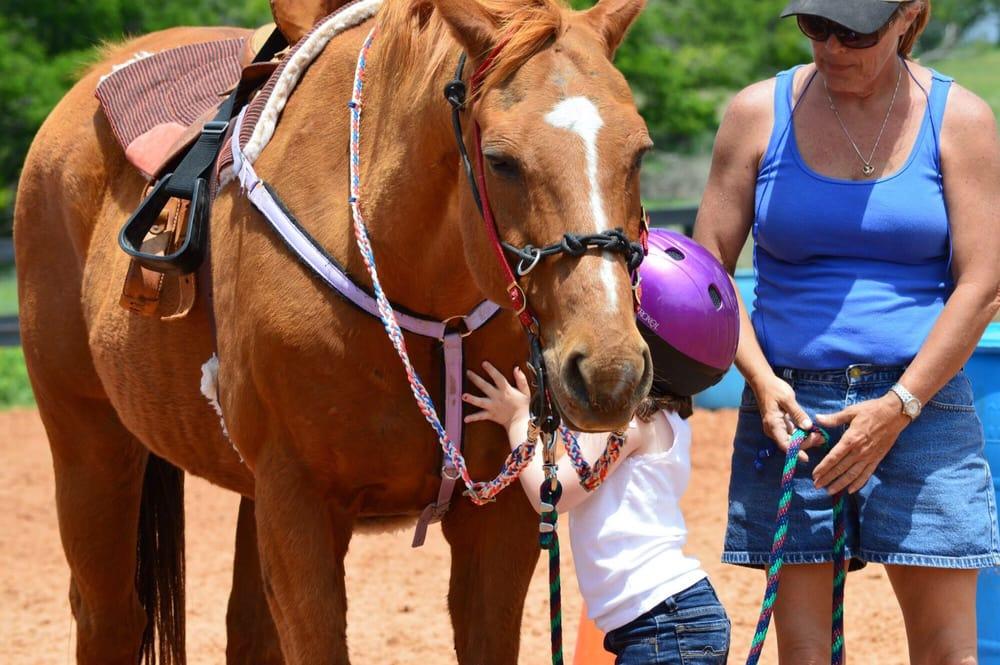 Me & Horses, LLC.: 249 Trinity Ranch Rd, Weatherford, TX