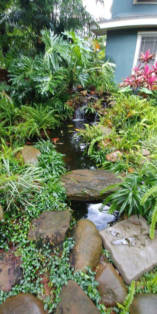 Bonsai Koi Ponds: 6289 Park Blvd, Pinellas Park, FL