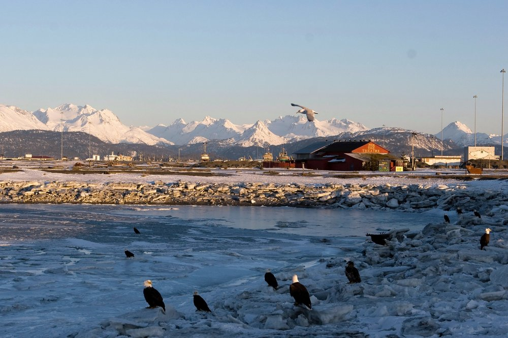 Alaska Family Motorhomes: 5737 Old Seward Hwy, Anchorage, AK
