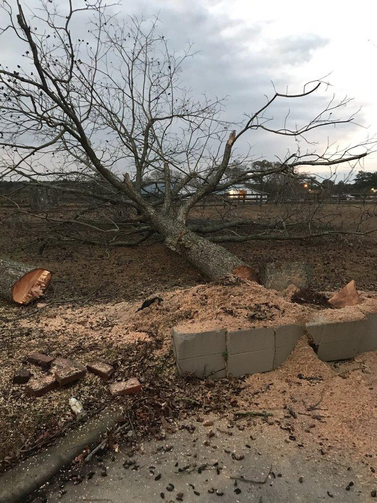 Trimtastic Tree Service: 206 Southpark Loop, Andalusia, AL