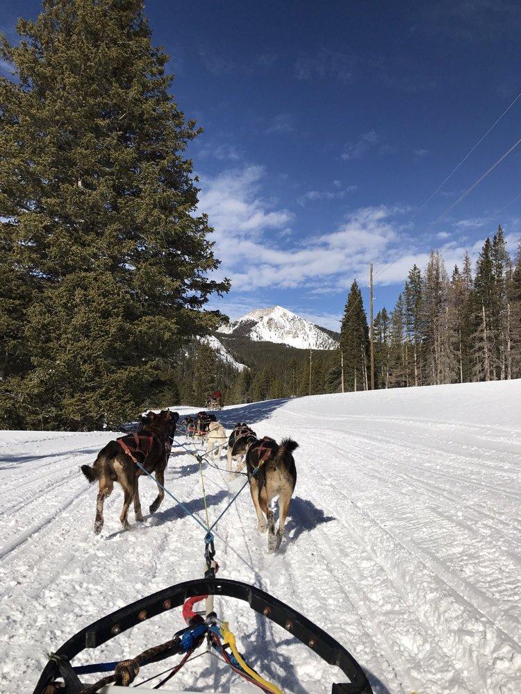 Monarch Dog Sled Rides: Salida, CO