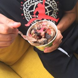 The Top 10 Best Ice Cream Frozen Yogurt Near Garfield Ridge