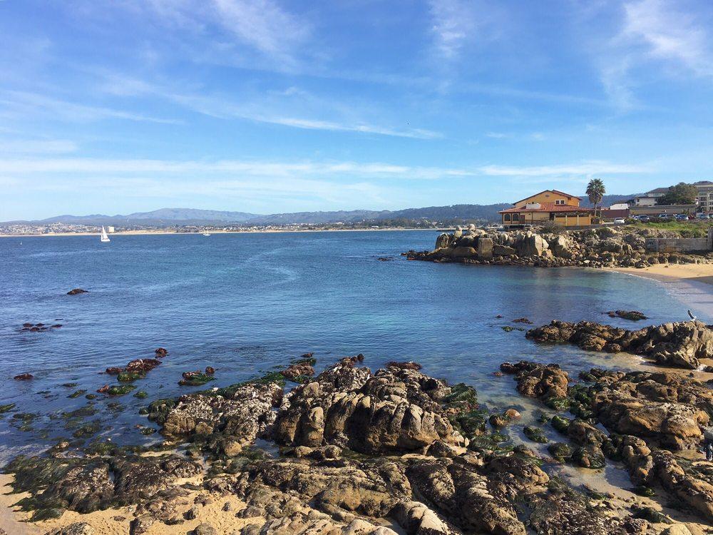 Beautiful views yelp for Fish hopper monterey