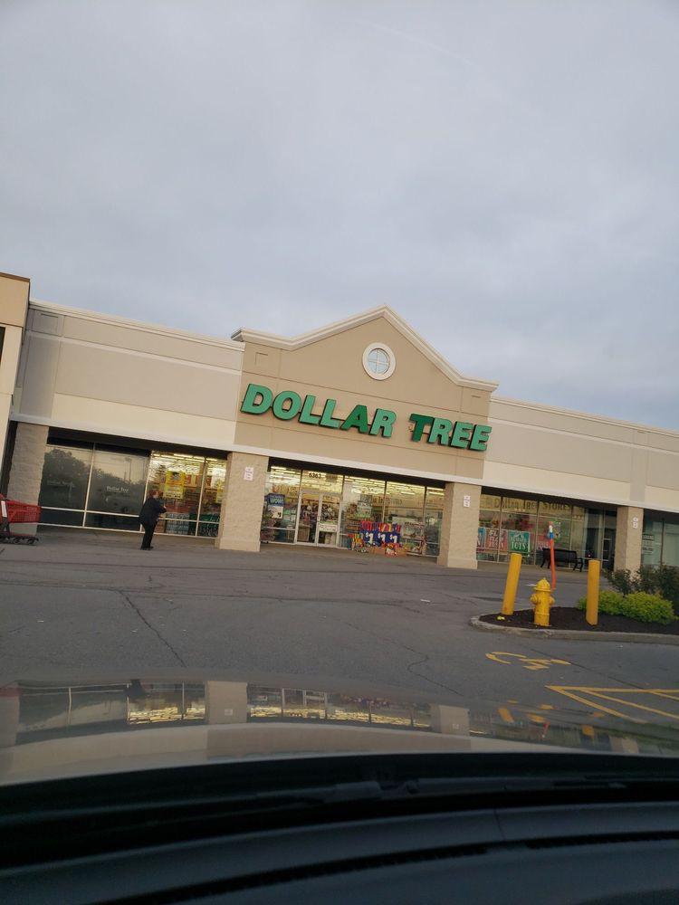 Dollar Tree: 6363 Transit Rd, Depew, NY