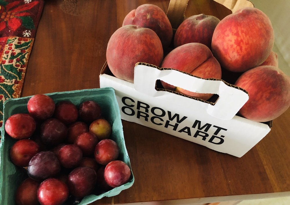 Crow Mountain Orchards: 6236 Co Rd 39, Fackler, AL