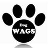 Dog Wags