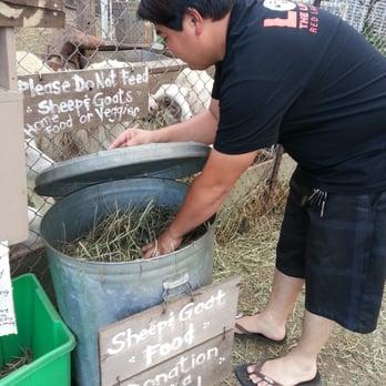 Animal farm 12 photos animal shelters 41 550 41 612 for Waimanalo feed