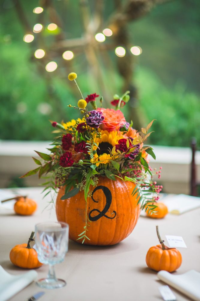 Rose and Bel Florals: Fallston, MD