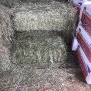 Red Barn Feed Supply Pet Stores 12948 Okeechobee Blvd