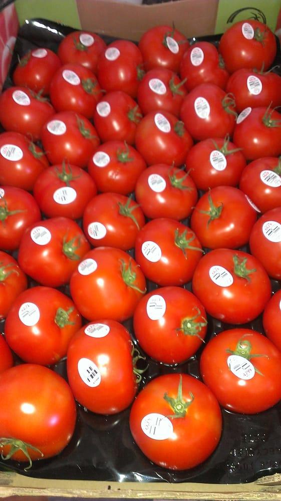 Borderlands Food Bank P O W W O W: 7511 N Benet Dr, Tucson, AZ