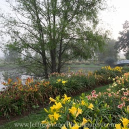 Oakes Daylilies Nurseries Gardening 7821 Corryton Luttrell Rd Knoxville Tn Phone