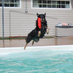 Boyd lake veterinary center veterinarians 3850 e 15th st photo of boyd lake veterinary center loveland co united states solutioingenieria Gallery
