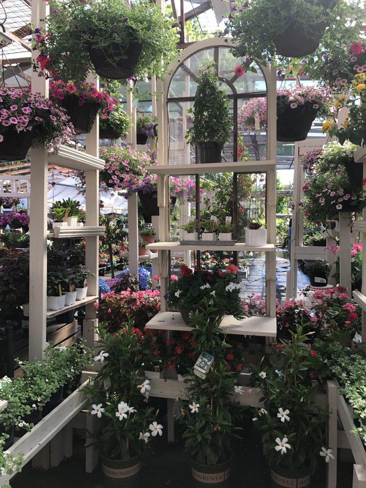 Photo Of Orchard Nursery Florist Lafayette Ca United States