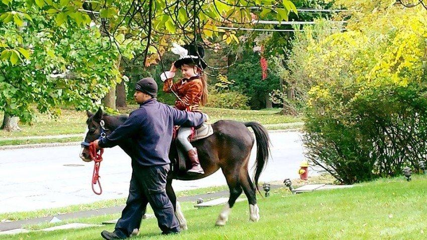 Pony Express Entertainment: Bronx, NY