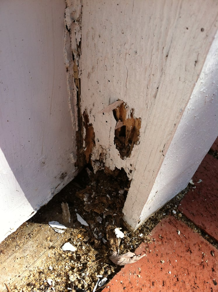 Termite Damage To Door Frame Yelp