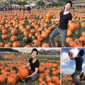 Cal Poly Pomona Pumpkin Festival - (New) 387 Photos & 158