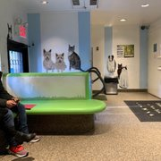 Bergen County Animal Shelter - (New) 20 Reviews - Animal
