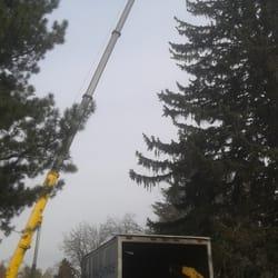 Photo Of Atlas Tree Service Salt Lake City Ut United States No