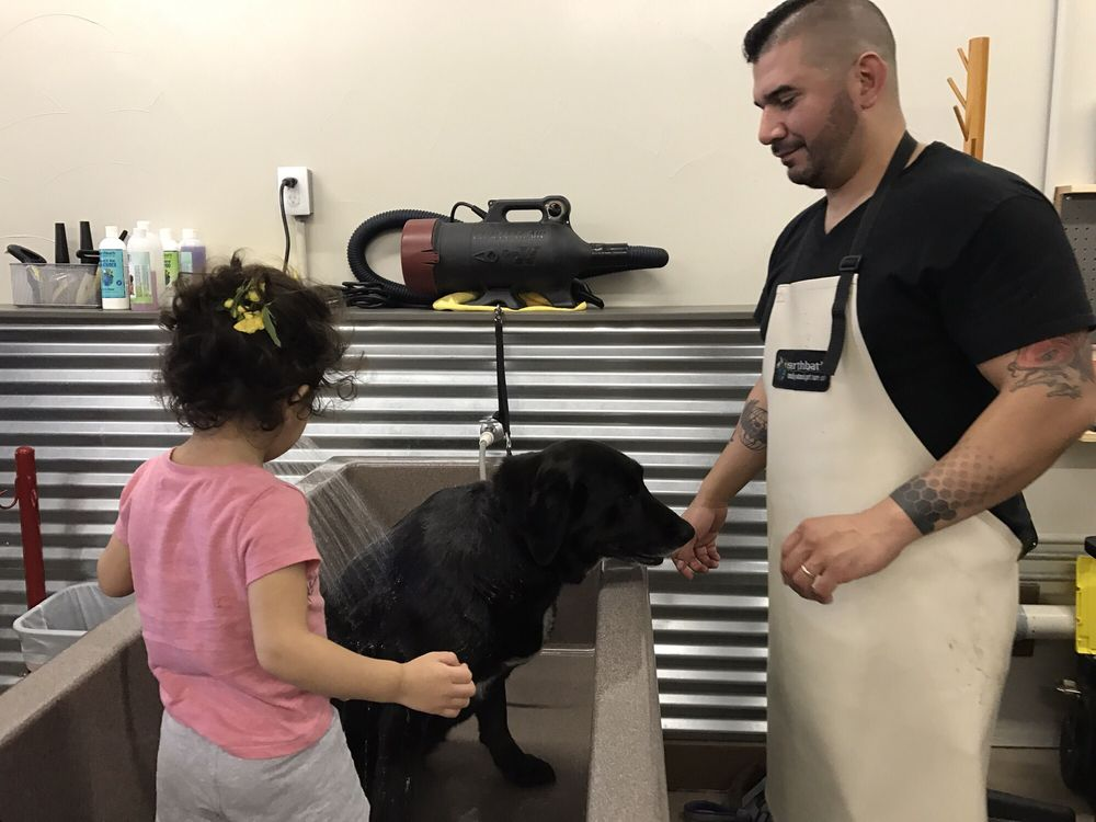 Top Dog Pet Wash
