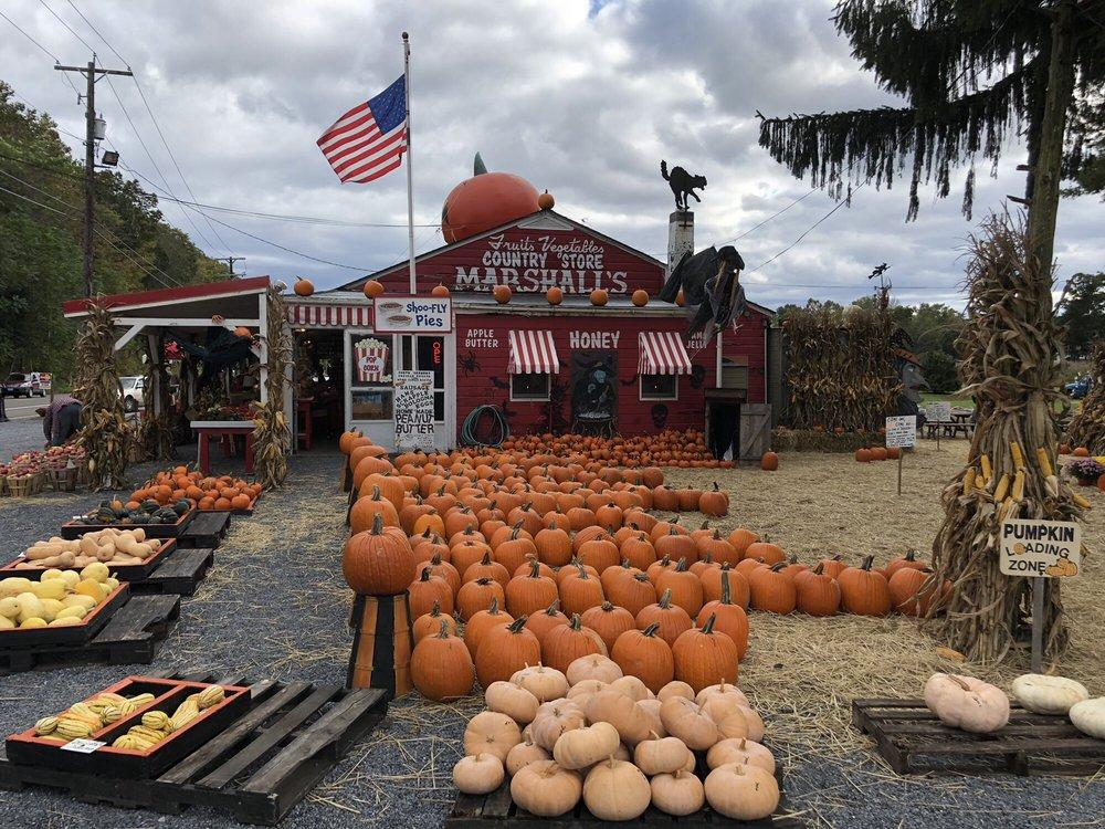 Marshall's Farm Market: 114 US Hwy 46, Delaware, NJ