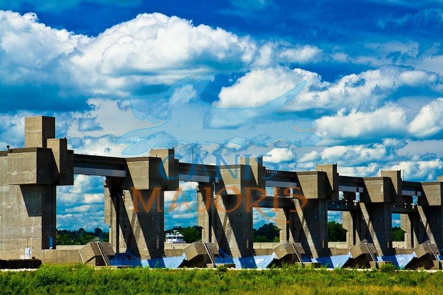 Canis Majoris Photography & Marketing Communications: 374 Hibler Ct, St Louis, MO