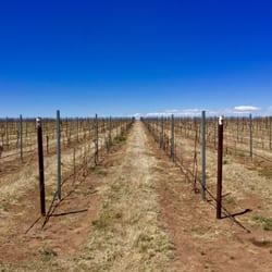 Kief Joshua Vineyards 46 Photos Amp 59 Reviews Wineries