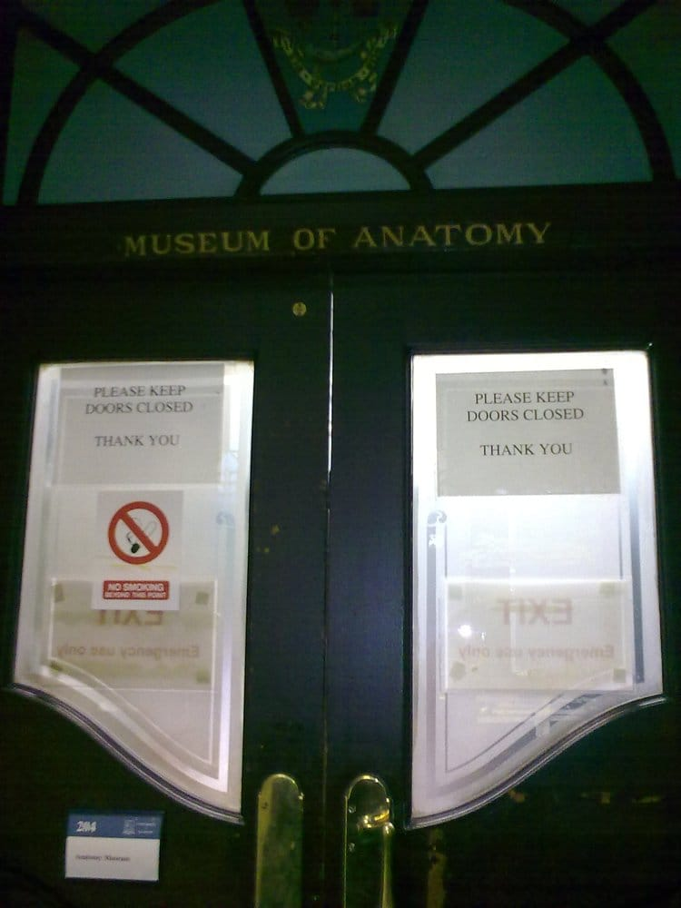 The Anatomy Museum - Museums - University of Glasgow, West End ...