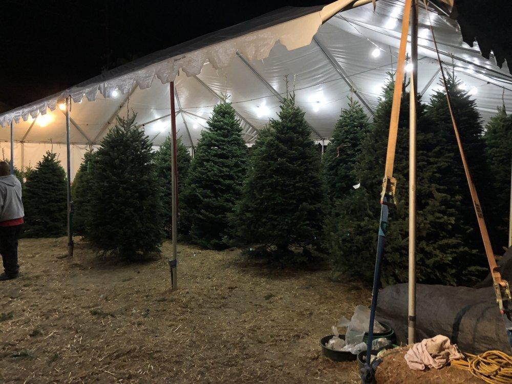 Tina's Christmas Tree Lot: 23611 Calabasas Rd, Calabasas, CA