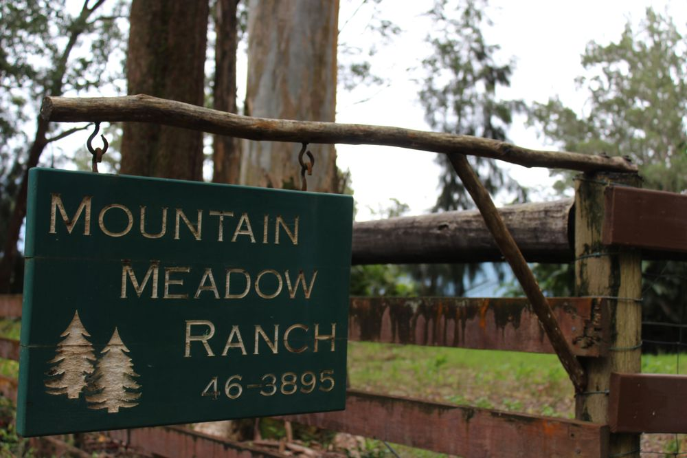 Mountain Meadow Ranch Bed & Breakfast