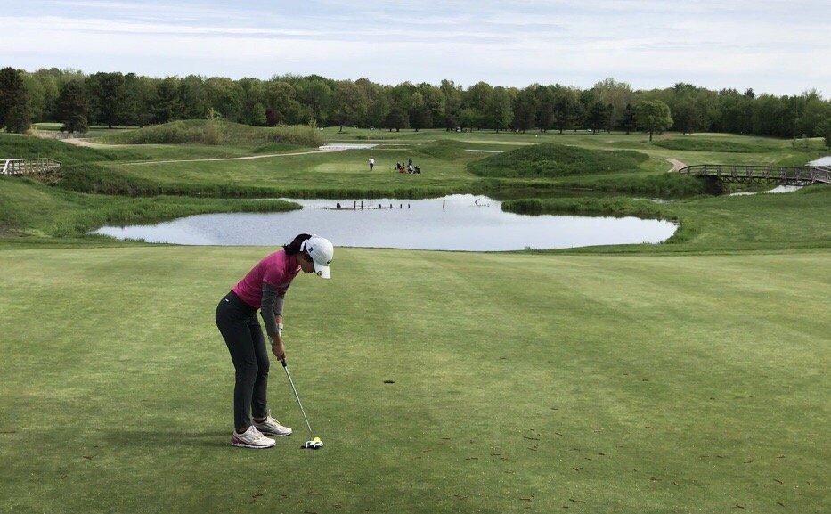 Valley View Farm Golf Course: 1435 S Thomas Rd, Saginaw, MI