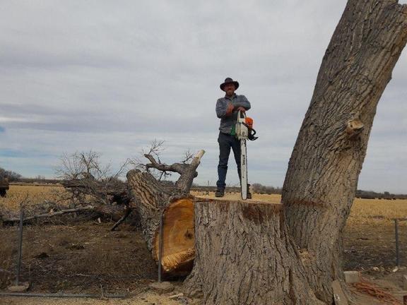 Landreth Timber: 1005 21st Ln, Pueblo, CO