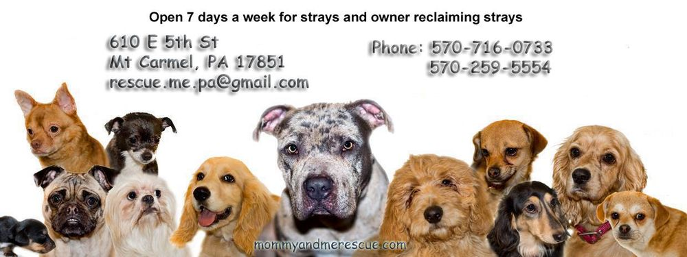 Mommy and Me Rescue: 610 E 5th St, Mount Carmel, PA