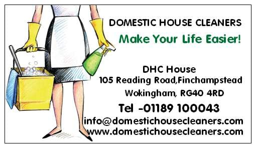 photo for domestic house cleaners