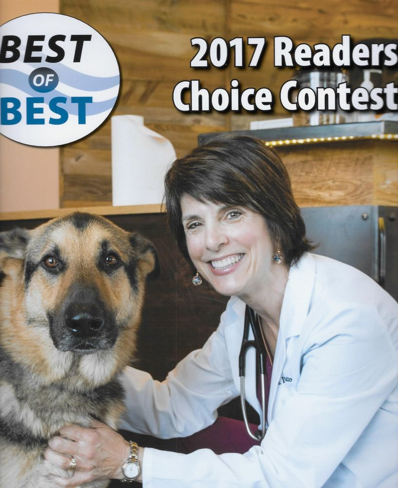 Cumberland Animal Clinic: 216 Greely Rd, Cumberland, ME