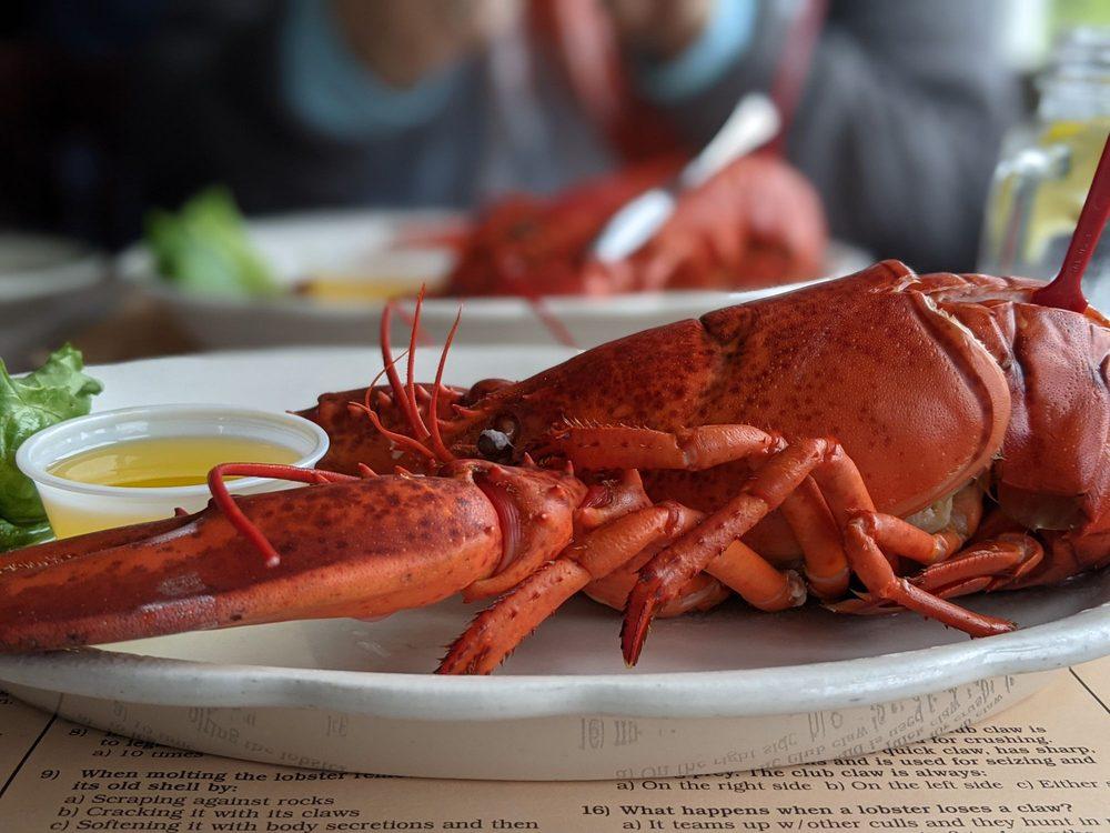Fox's Lobster House: 8 Sohier Park Rd, York, ME