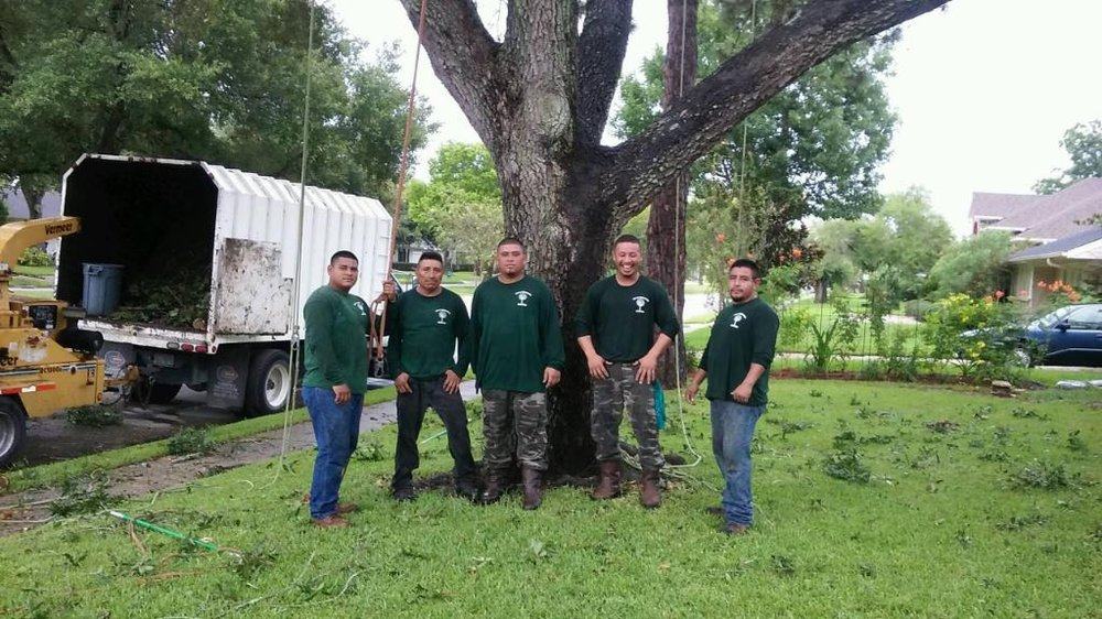 Gilbert's Tree Service: Houston, TX
