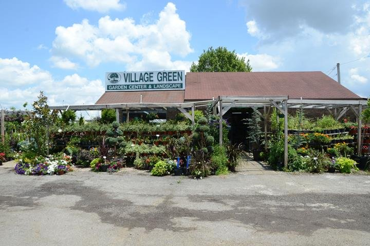 Village Green Nursery and Landscape: 987 Chambers Blvd, Bardstown, KY