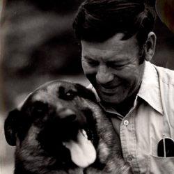 Bob Martin Dog Training School And Boarding Kennels Pet Sitting