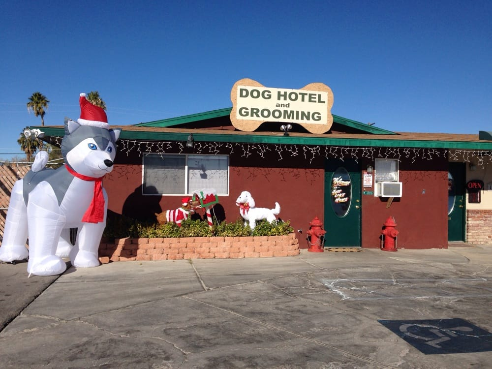 Just Like Home Doggie Hotel Las Vegas