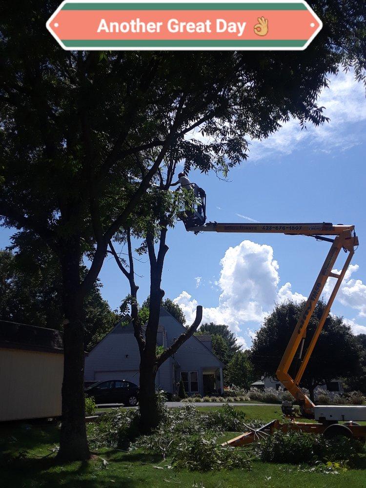 The Tree Trimmer: 2536 Elizabethton Hwy, Johnson City, TN
