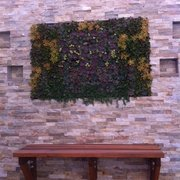 ... Photo Of Vertical Garden Solutions   Encinitas, CA, United States