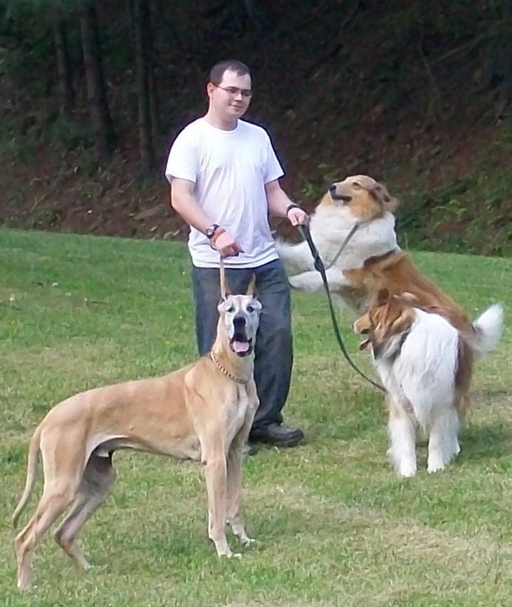 Executive Pet Services