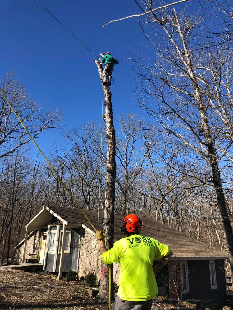 Voss Landscape & Tree Service: 8501 N Hwy Vv, Columbia, MO
