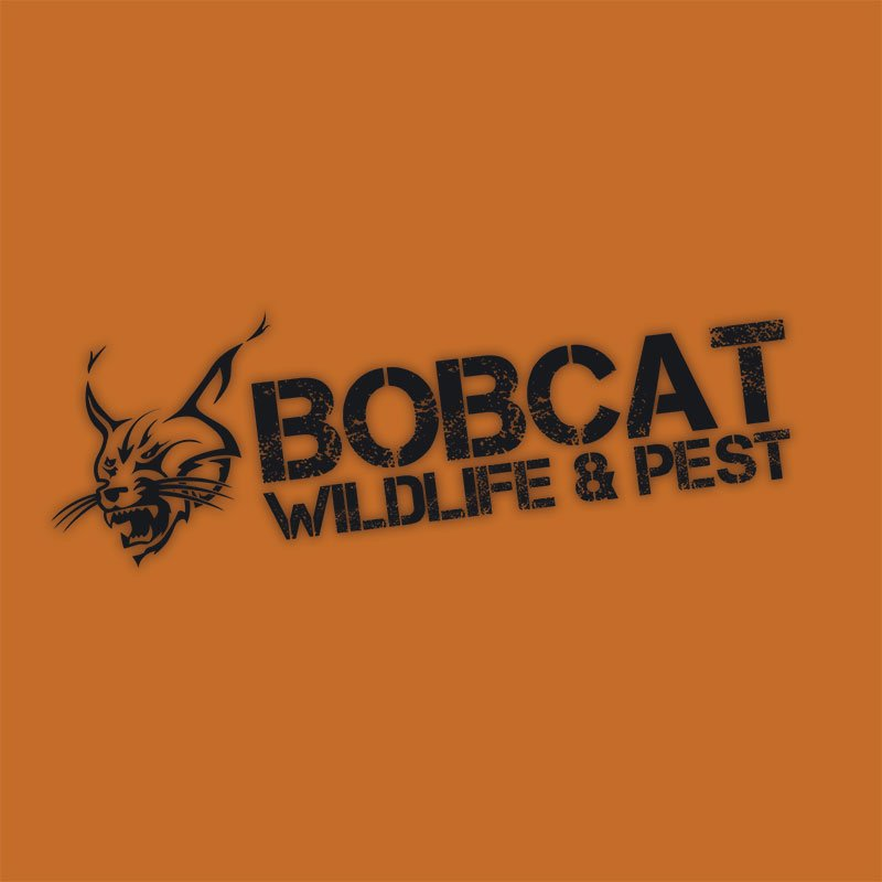 Bobcat Wildlife & Pest Management: 33621 S Old Hwy 6, Redfield, IA