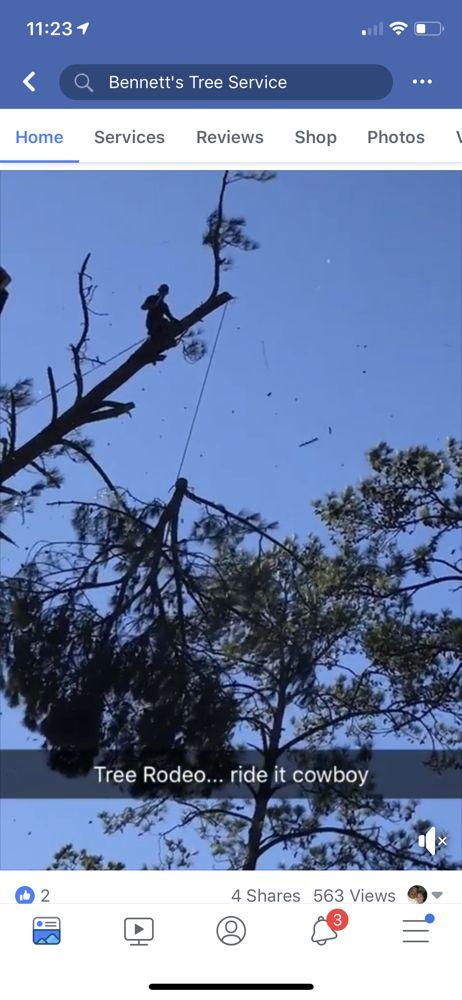 Bennett's Tree Service: 2811 US Hwy 41 S, Valdosta, GA