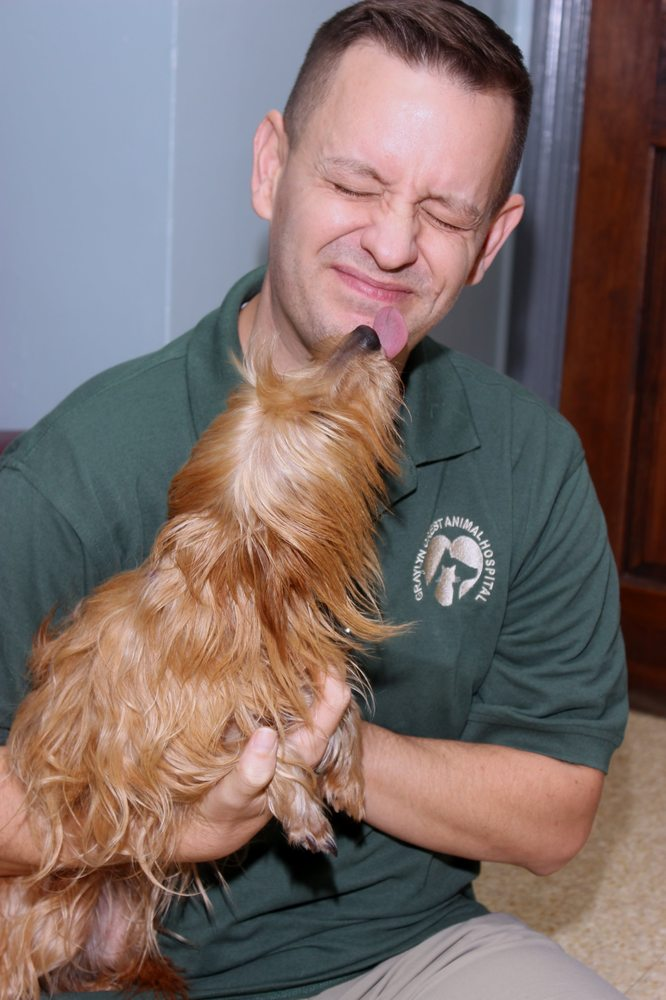 Graylyn Crest Animal Hospital: 2006 Marsh Rd, Wilmington, DE