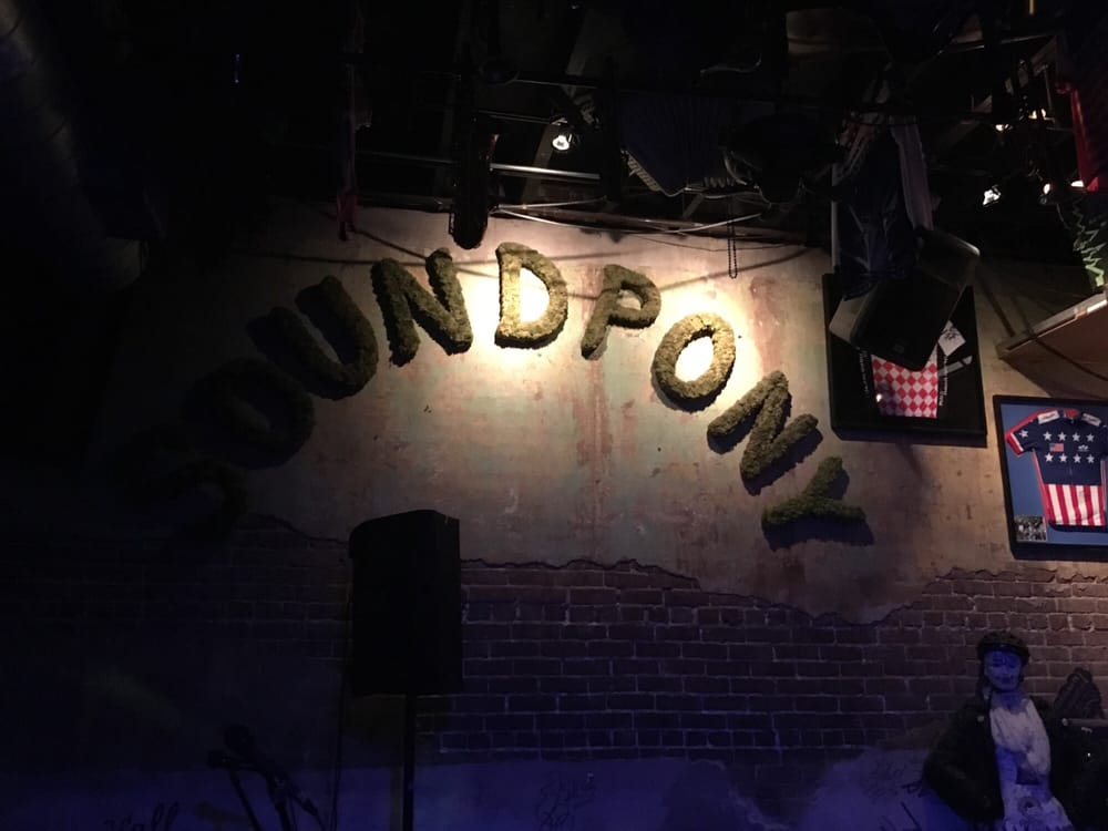 The Soundpony