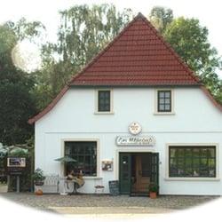 File:Schwarzerlen am Mühlenteich Lübeck Germany.jpg