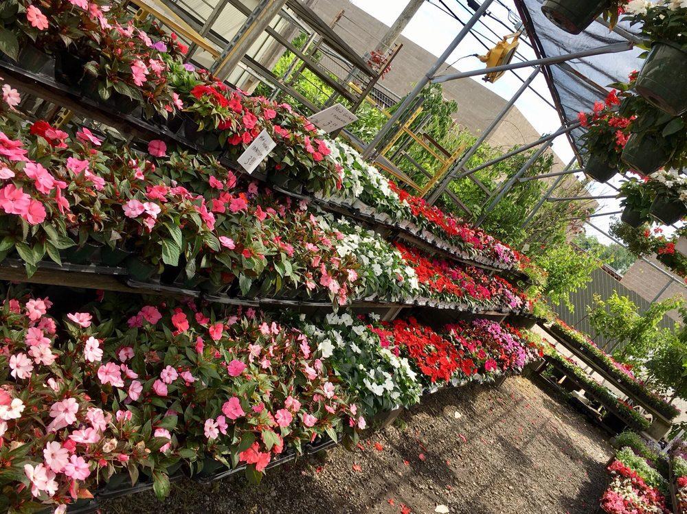 Sweetbrook Nursery & Garden Center: 2371 Forest Ave, Staten Island, NY