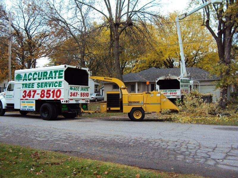 Accurate Tree Service: 8509 Elderberry Rd, Mount Horeb, WI